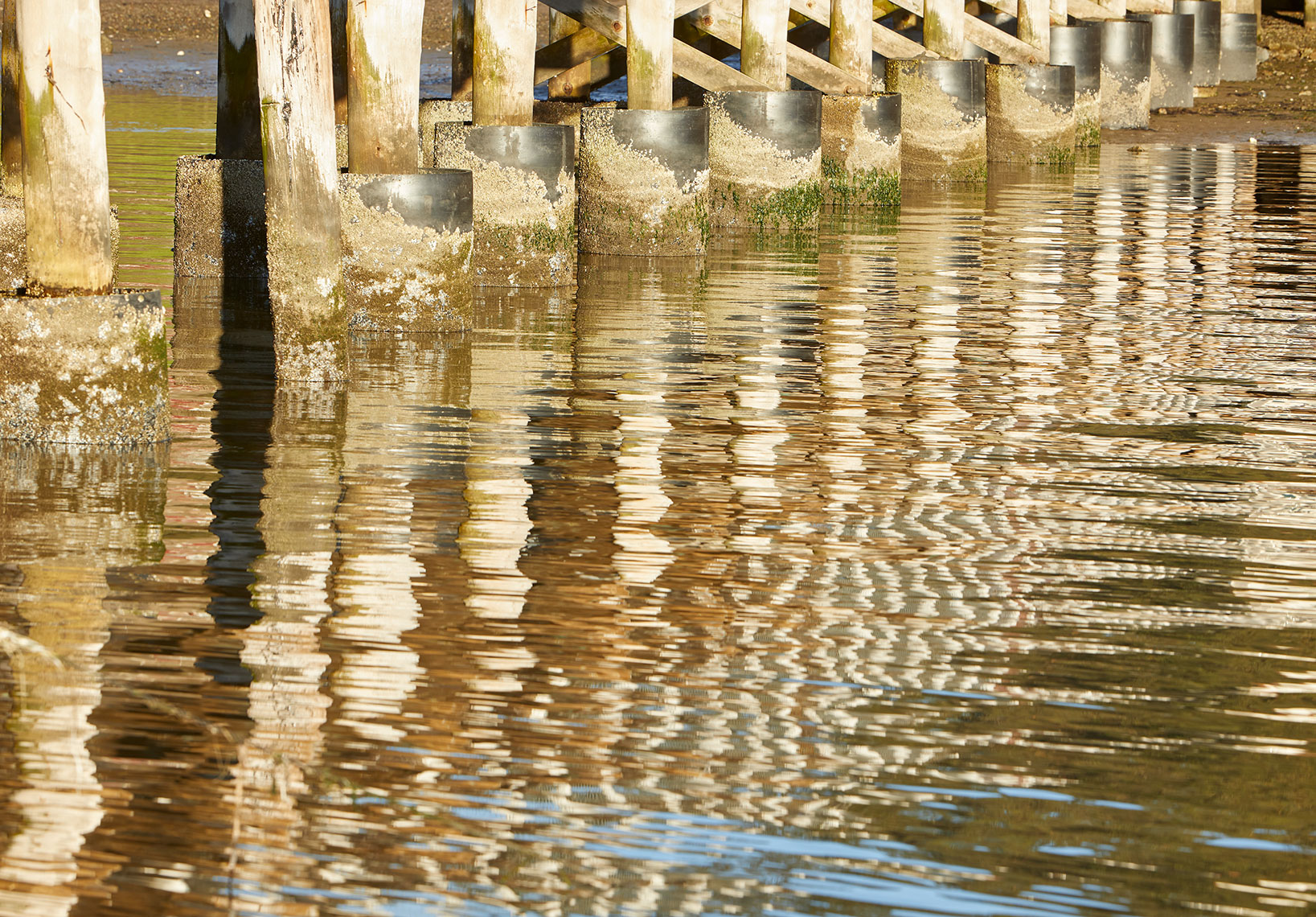 Piers reflecting in Tomales Bay